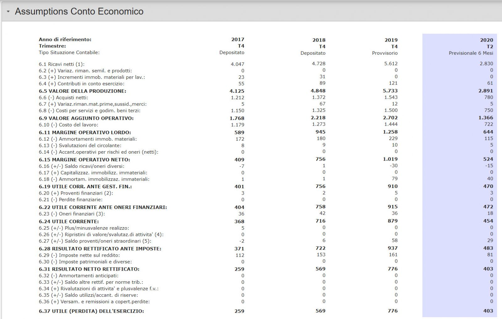 assumptions-budget-conto-economico
